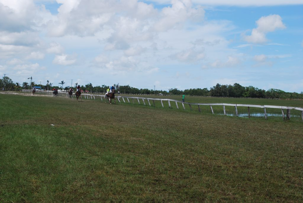 https://horseracingbelize.com/Castleton Race Track