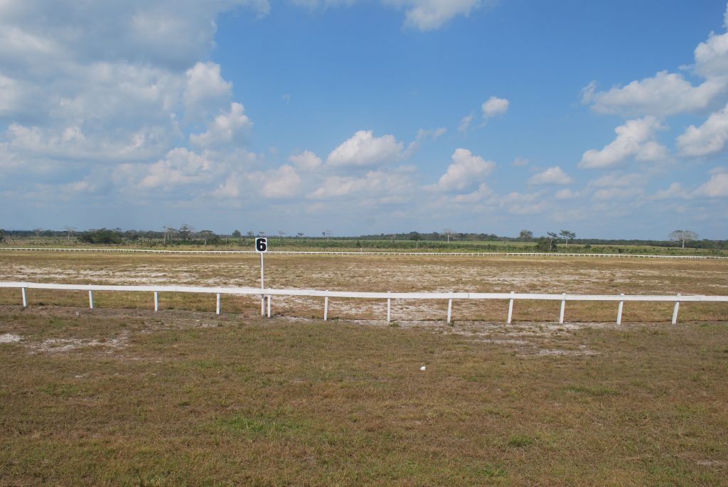 https://horseracingbelize.com/Benny Padron Race Track