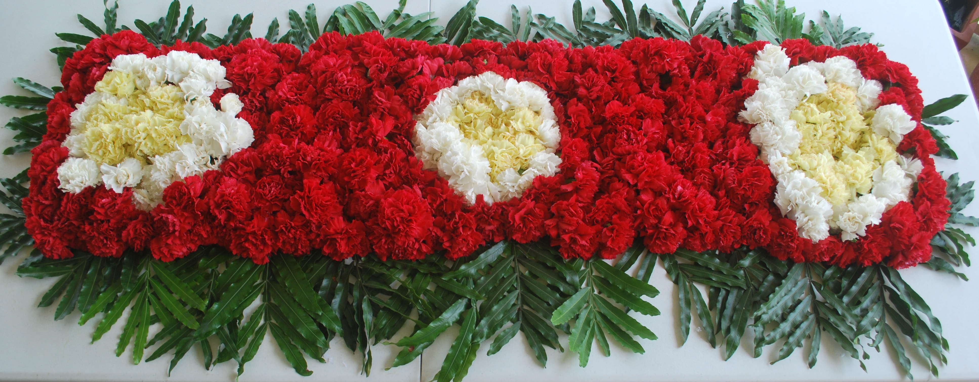 https://horseracingbelize.com/Castleton Derby Blanket Of Carnations