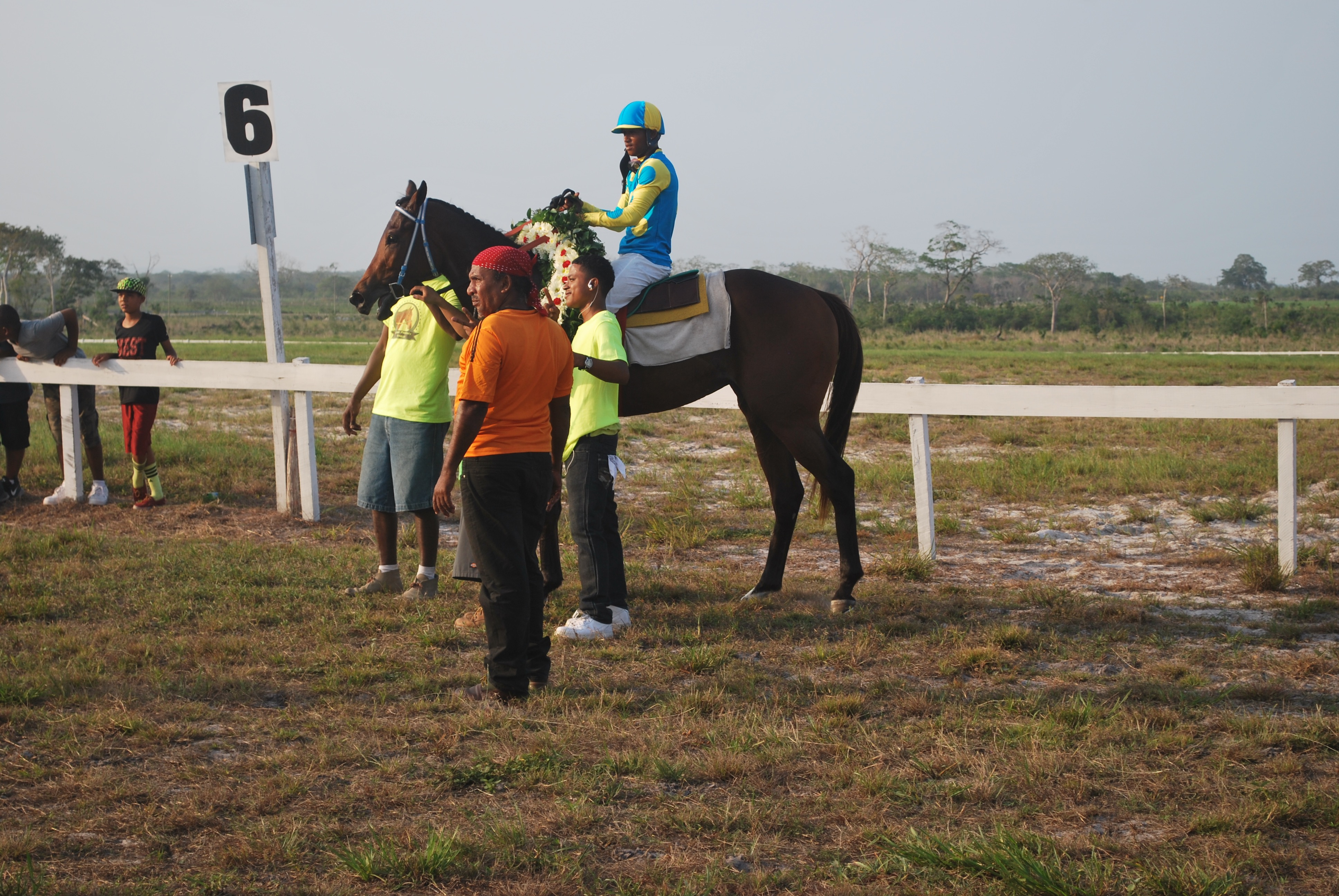 https://horseracingbelize.com/Padrino Wins San Felipe Stakes