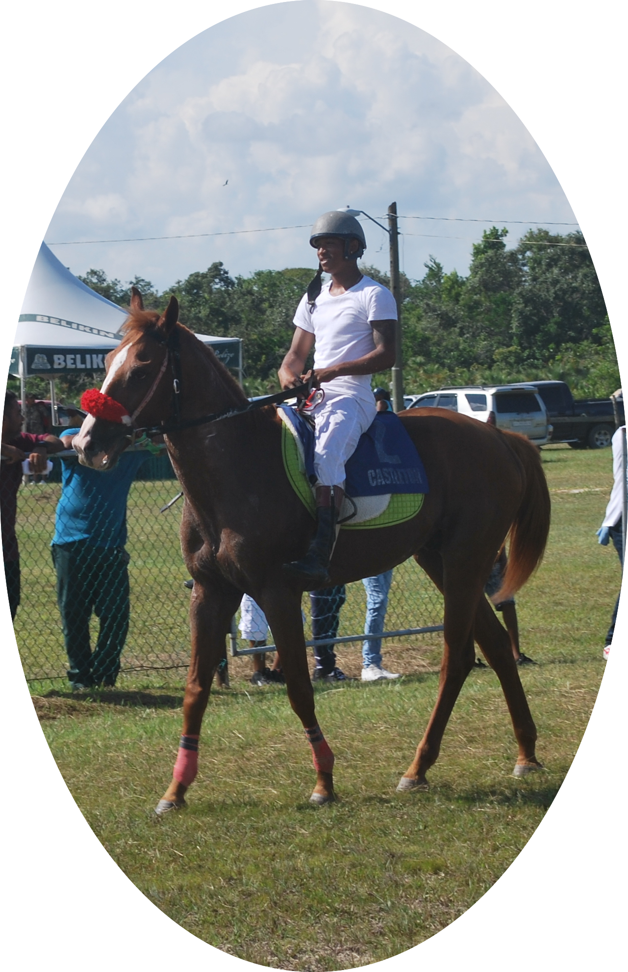 https://horseracingbelize.com/One More for Cat
