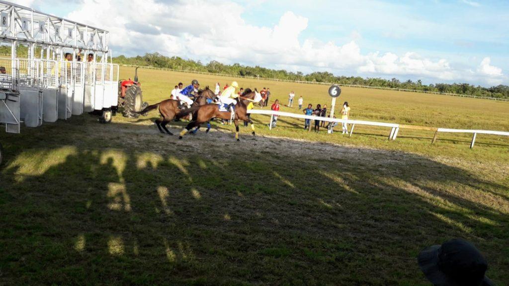 Start of the A Class 6 Furlong Race