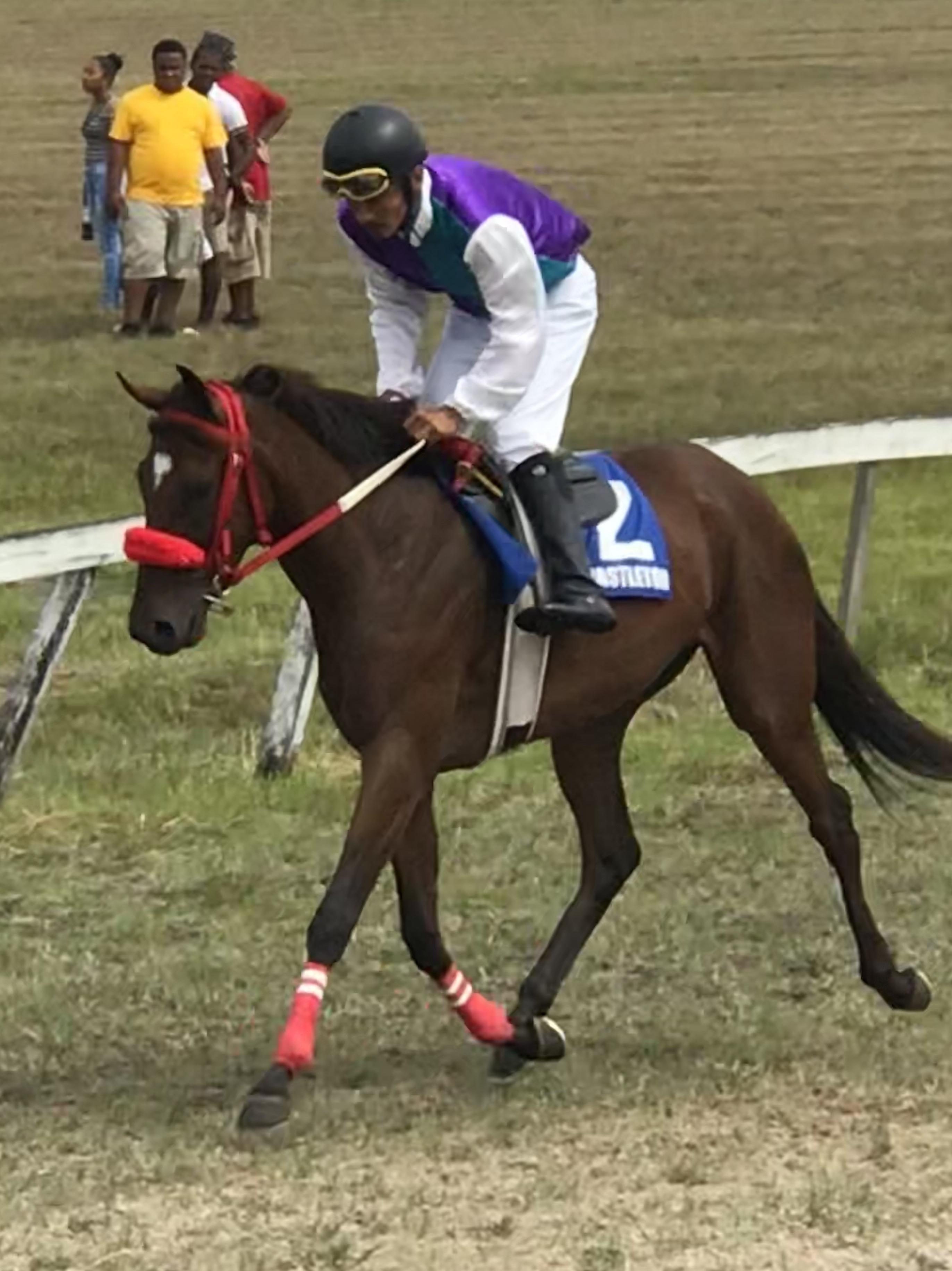 https://horseracingbelize.com/Nayanda