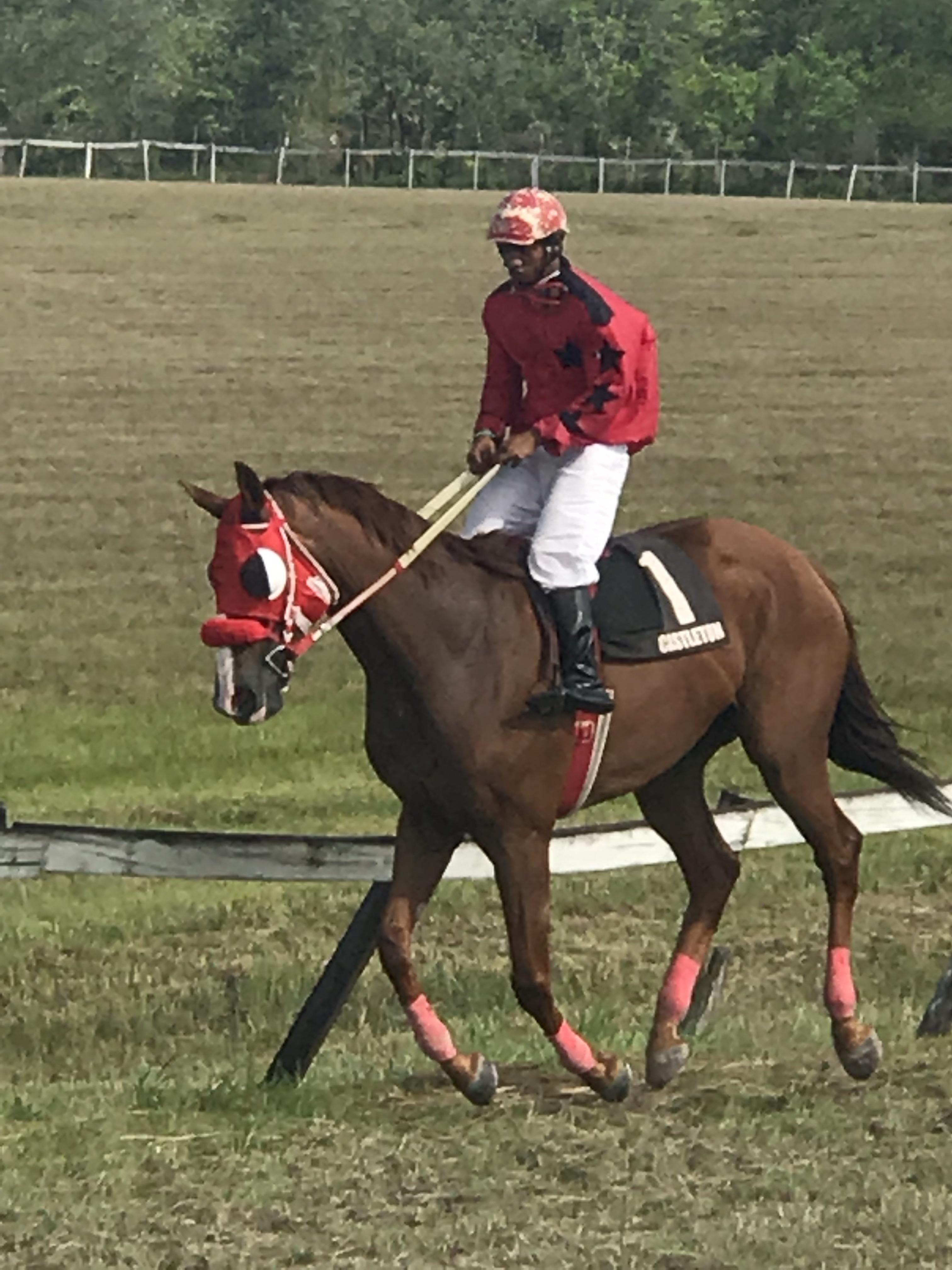 https://horseracingbelize.com/Brittany's Special