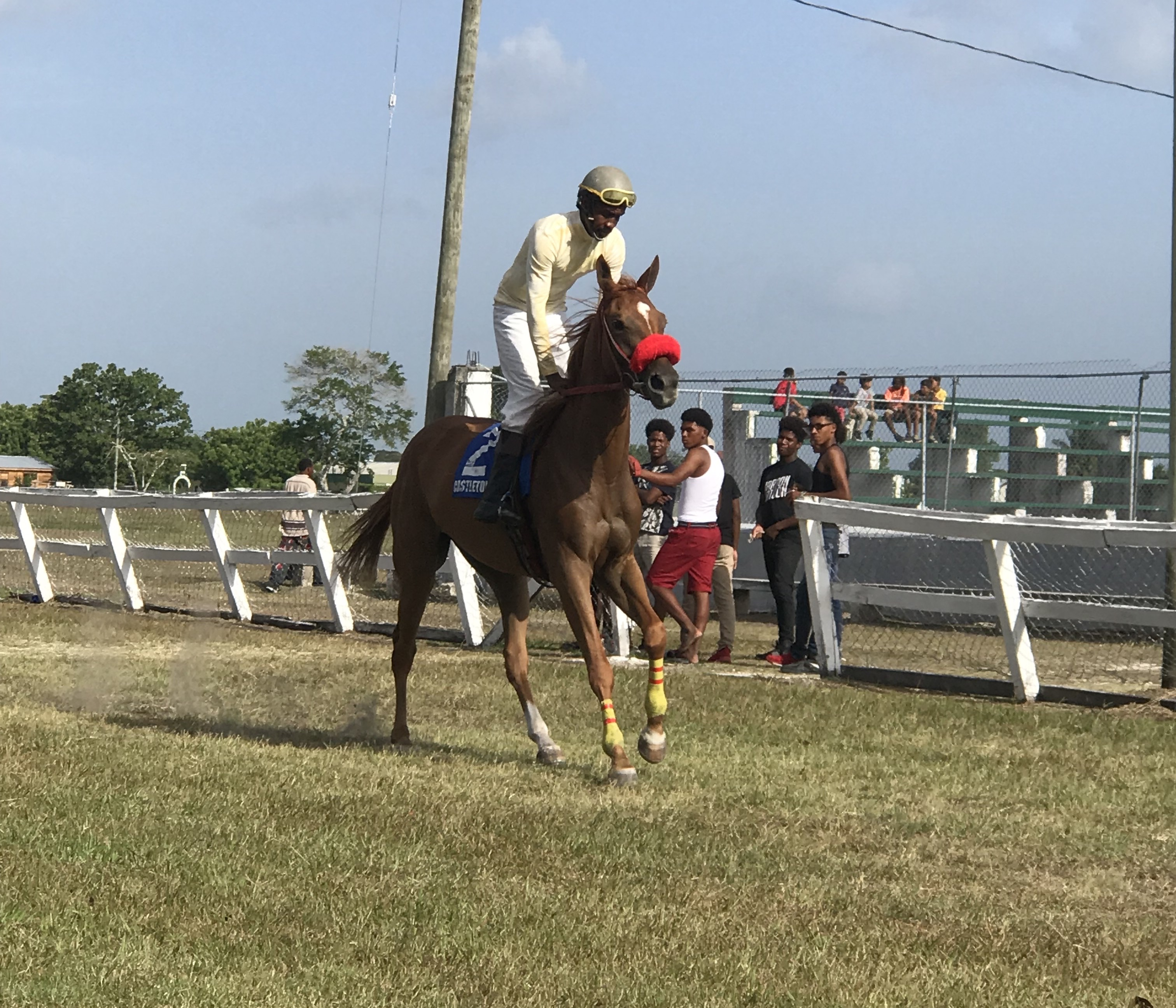 https://horseracingbelize.com/Queen Empress